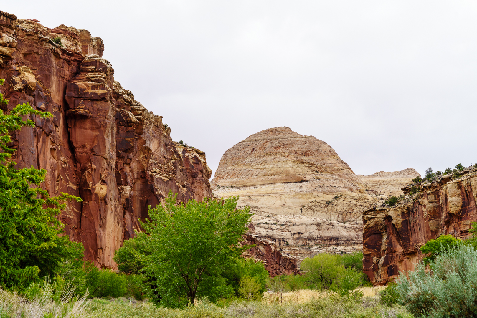 Capitol Reef for blog-46